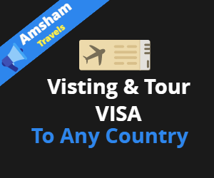 visa processing agents